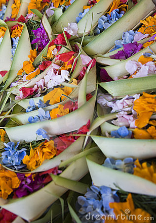 Free Bali Offering Stock Photography - 6306112
