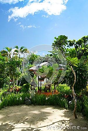 Bali resort garden