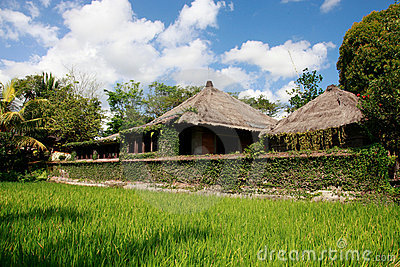 Balinese cottage.