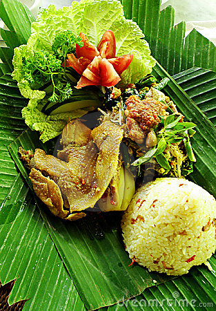 Free Balinese Ethnic Duck Dish Stock Photography - 10538722