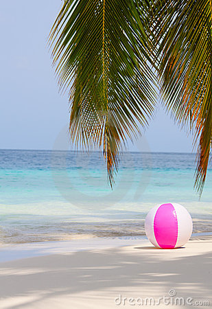 Ball on the beach under the palm
