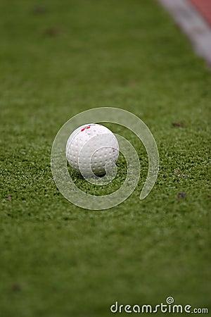 Ball on the grass