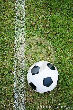 Ball in grass.