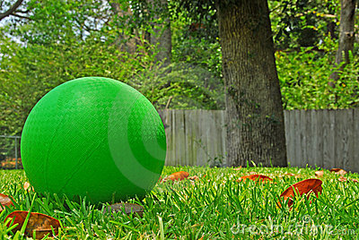 Ball in Yard
