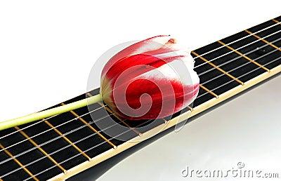 Ballad of love
