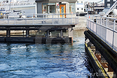Ballard Locks opening