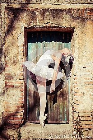 Free Ballet Dancer Stock Photo - 30655300