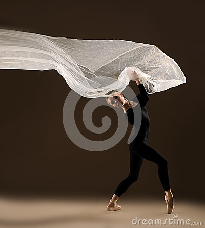 Free Ballet Dancer Royalty Free Stock Photography - 41425527