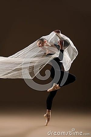 Free Ballet Dancer Stock Photos - 41425533