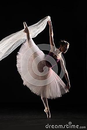 Free Ballet Dancer Stock Images - 41425584