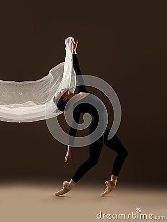 Free Ballet Dancer Stock Images - 41425804