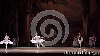 Ballet del lago swan