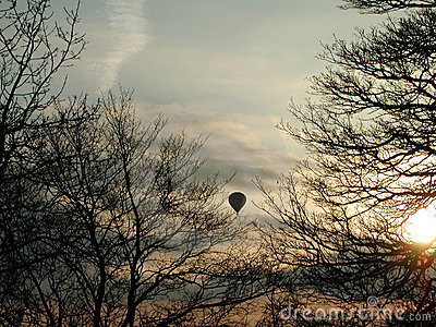 Balloon between trees