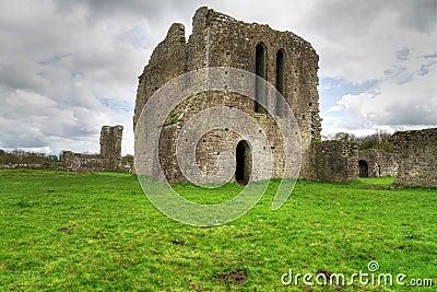 Ballybeg小修道院