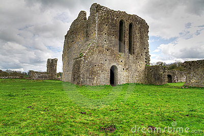 Ballybeg priory