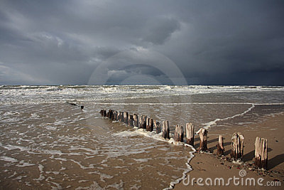 Baltic Beach with Wooden Pales