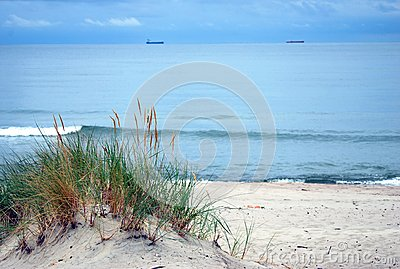 Baltic sea shore, dunes, sand beach, blue sky
