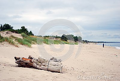 Baltic spit sirene nature scenery