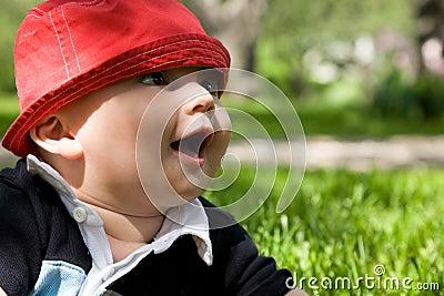 Bambino in erba