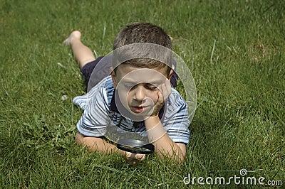 Bambino osservando natura