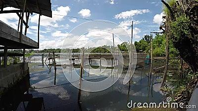 Bamboestructuur langs de kust van het meer wordt gebouwd dat stock footage