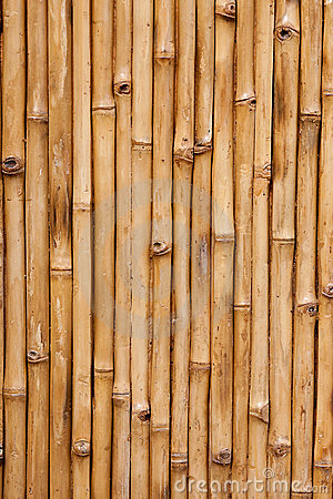 Free Bamboo Stock Photos - 11237863