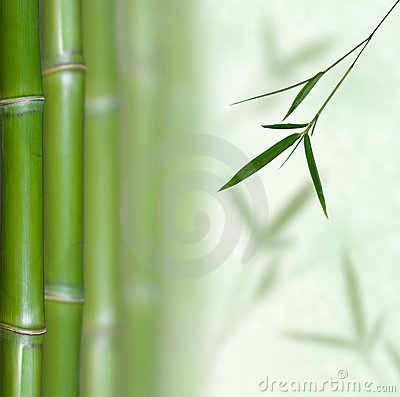 Free Bamboo Royalty Free Stock Images - 13414779