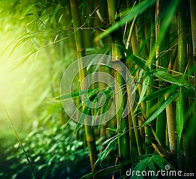 Free Bamboo Royalty Free Stock Image - 23791456