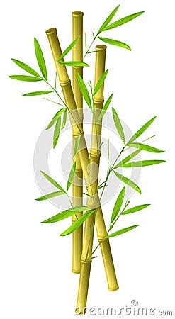 Free Bamboo Stock Image - 5309201