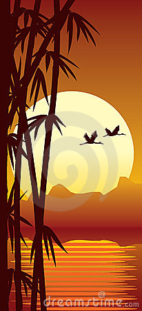 Free Bamboo And Sunset Royalty Free Stock Photos - 2287678