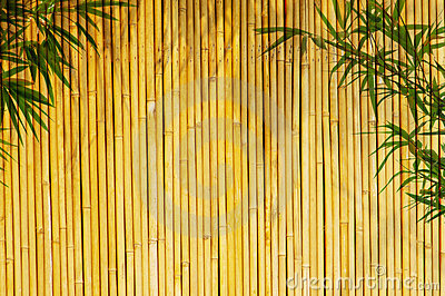Bamboo Background Royalty Free Stock Photos Image 10133228