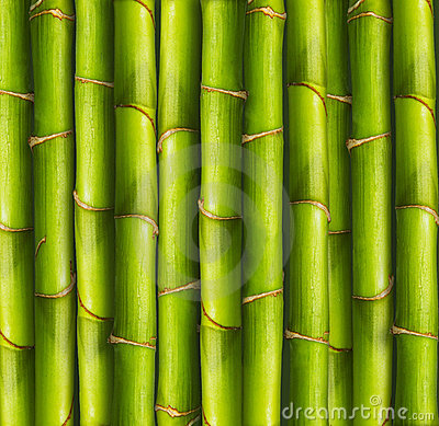 Free Bamboo Background Stock Photography - 3277782