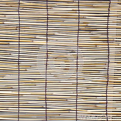 Bamboo blind pattern