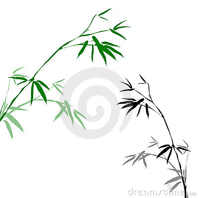 Bamboo Branches Royalty Free Stock Photography - Image: 14811947