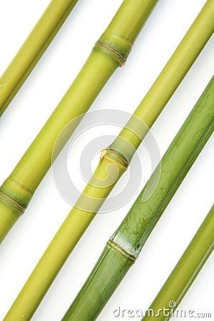 Bamboo diagonal