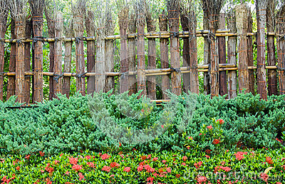 Bamboo fence.