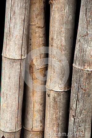 Bamboo fence Wood - texture