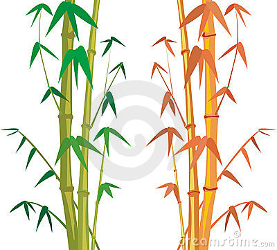 Bamboo - frame and background