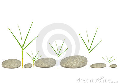 Bamboo Grass and Pebbles