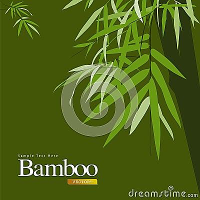 Bamboo green vector illustration