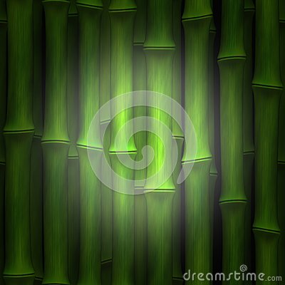 Bamboo highlight