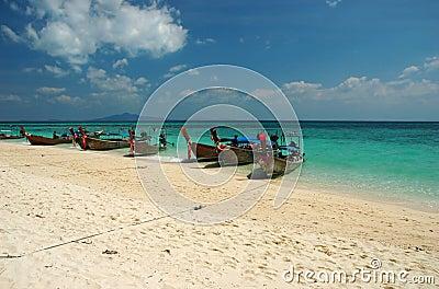 Bamboo island boats