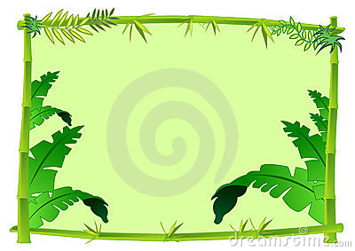 Bamboo And Jungle Frame Concept Illustration Stock Images