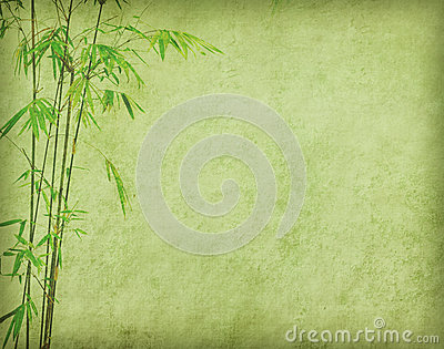 Bamboo on old grunge paper texture