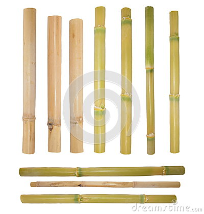 Bamboo rattan isolated on white