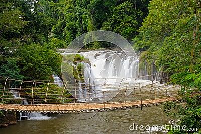 The bamboo rope bridge in Tad Pha Souam waterfall, Laos.