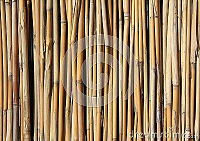 Bamboo set