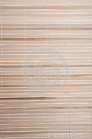 Bamboo Shade Background