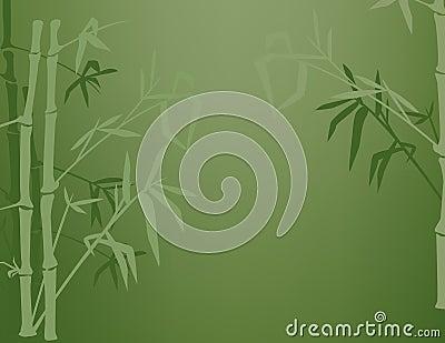 Bamboo Shadows