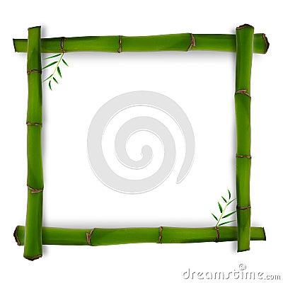 Bamboo shape